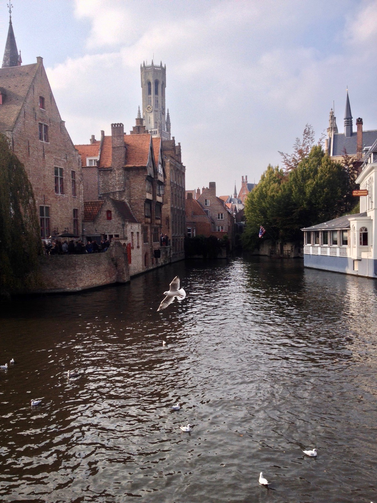 It's hard to stop taking photos in Bruges.