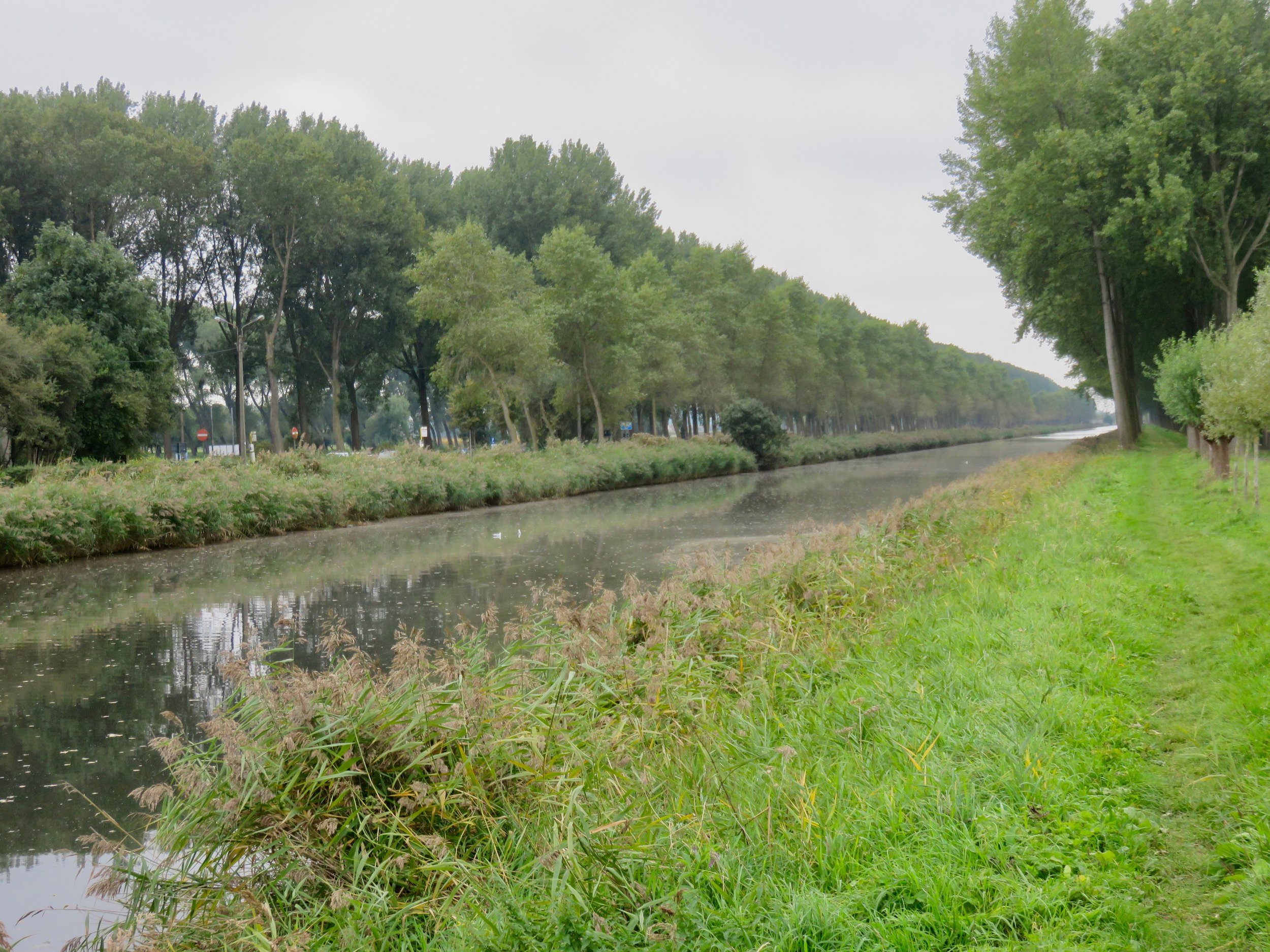 We get to see the real Rembrandt countryside on our bike ride to Damme.