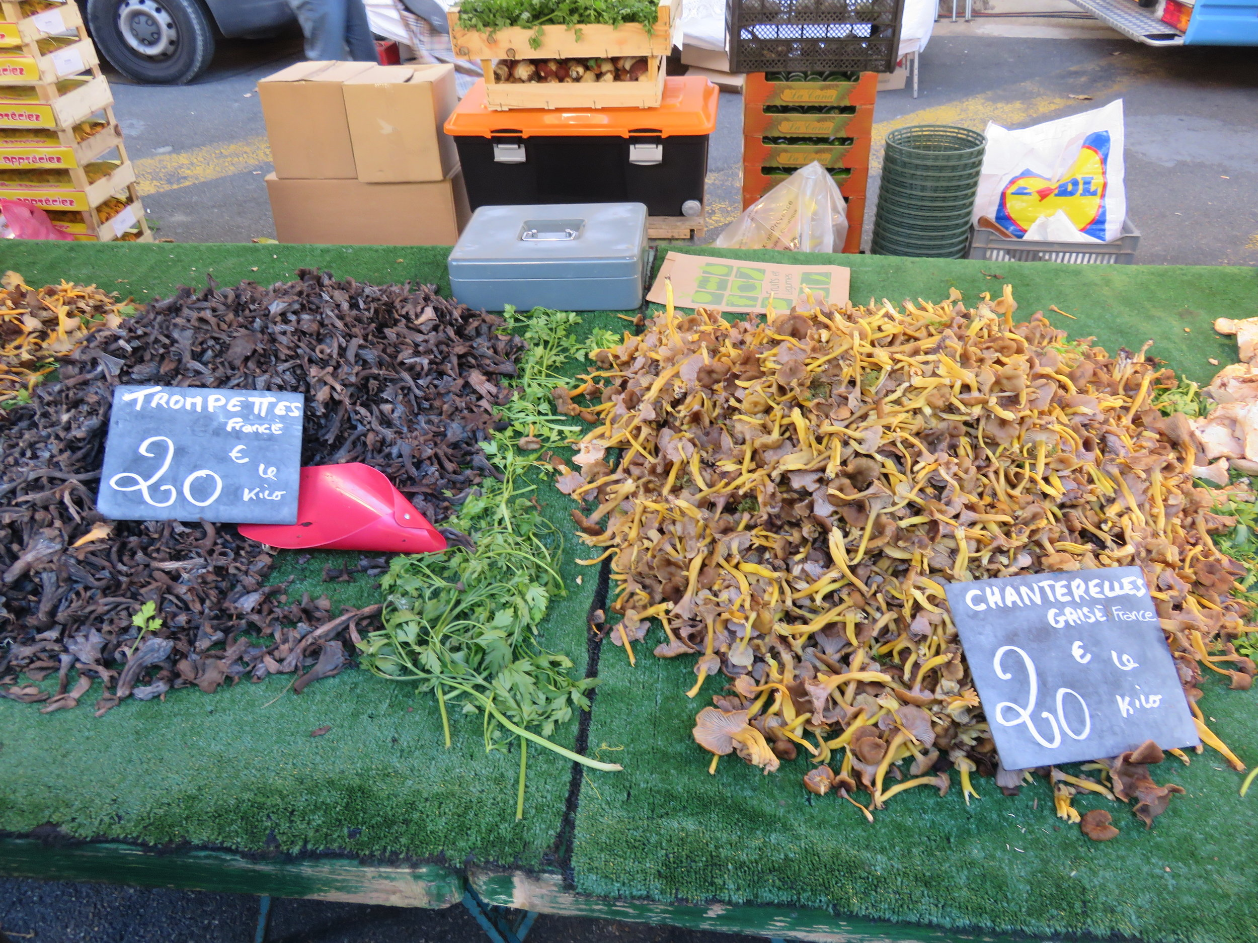 The market in Aix had over a dozen different types of mushrooms for sale.