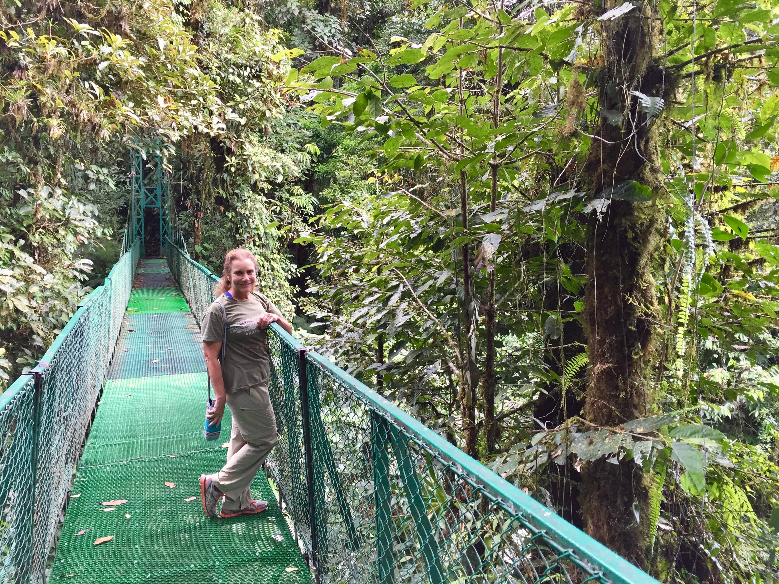After zip-lining, there are a series of bridges over the rain forest for a stroll.