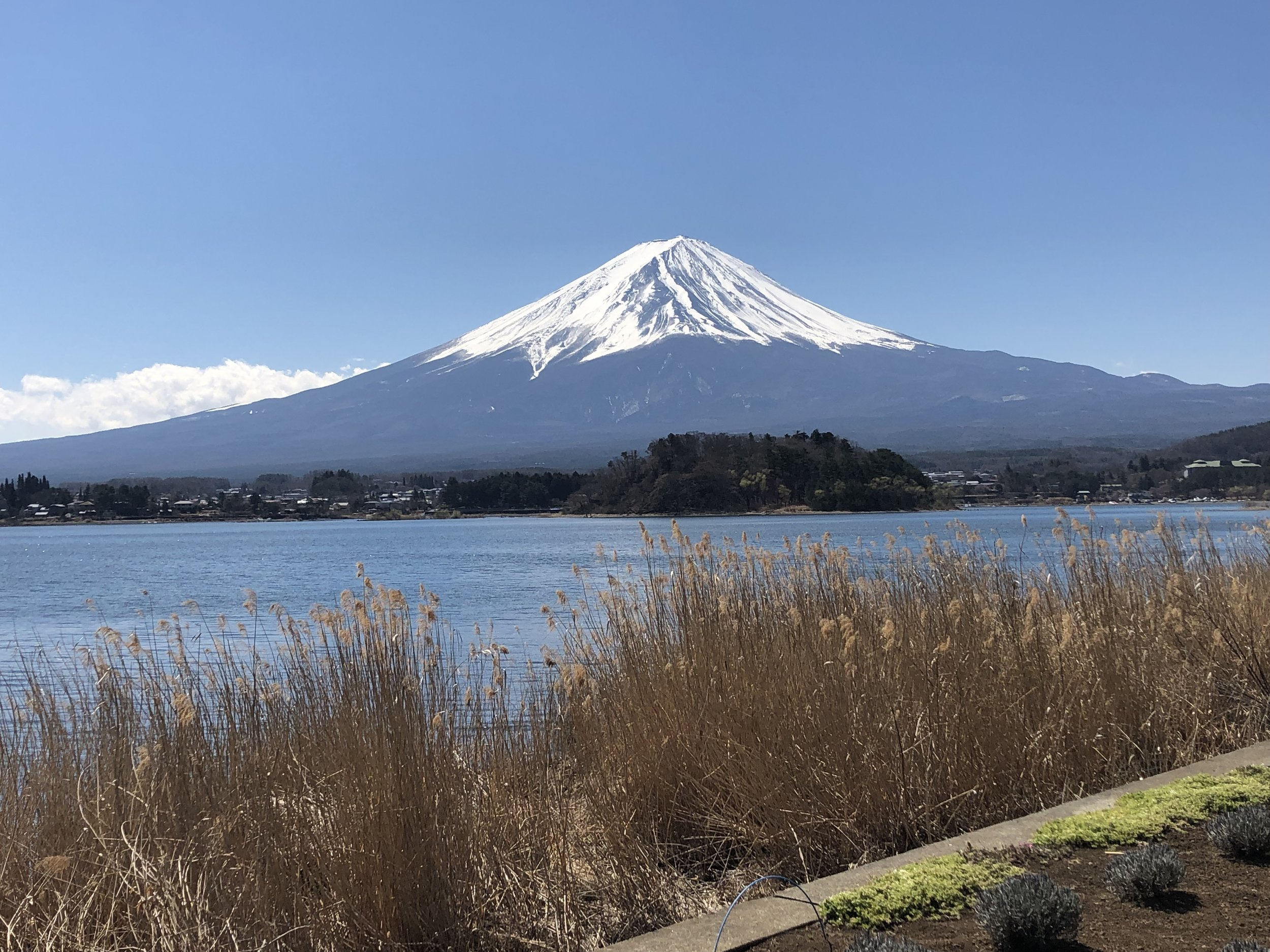 Mt. Fuji keeps appearing as if posing for portraits.