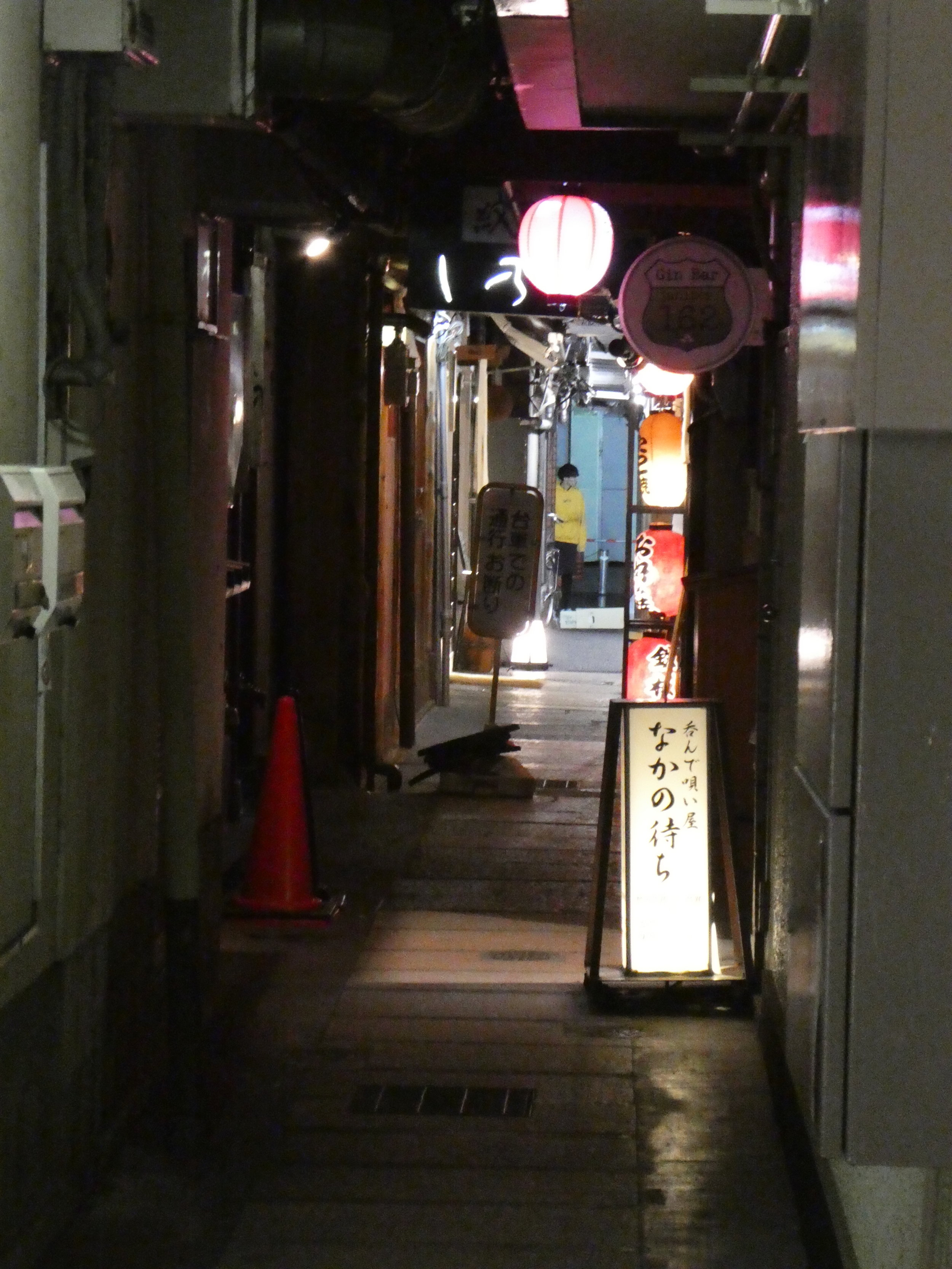 Many strange dark corridors in an area of Kyoto filled with restaurants and bars.