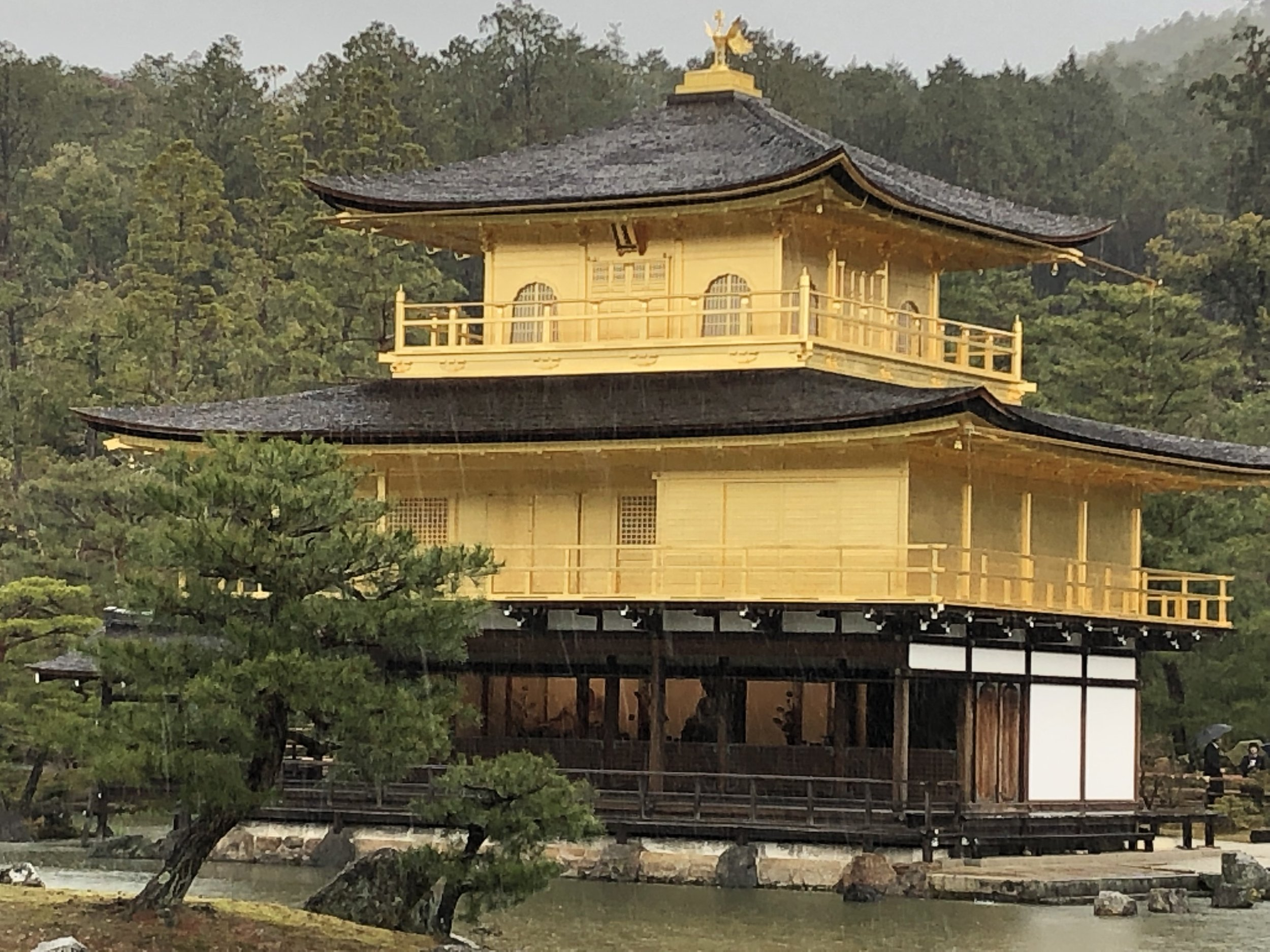 The iconic Golden Temple (Kinkaku-ji) just outside Kyoto. Sadly, no one is allowed inside the building but it is still worth the trip.