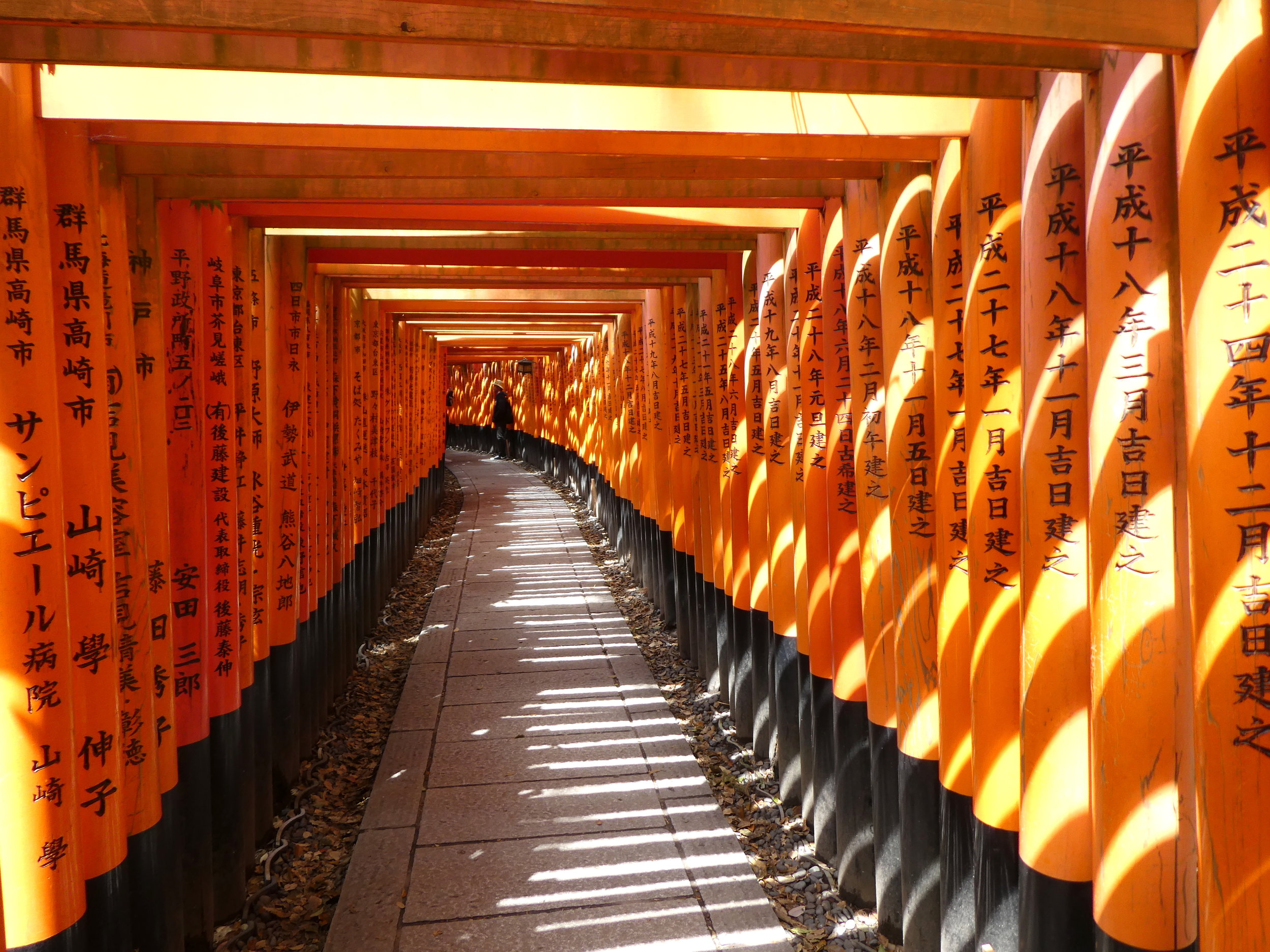 Inari gates. Going through these gates, which number in the thousands, takes you up a steep hillside to a mountaintop shrine overlooking Kyoto.