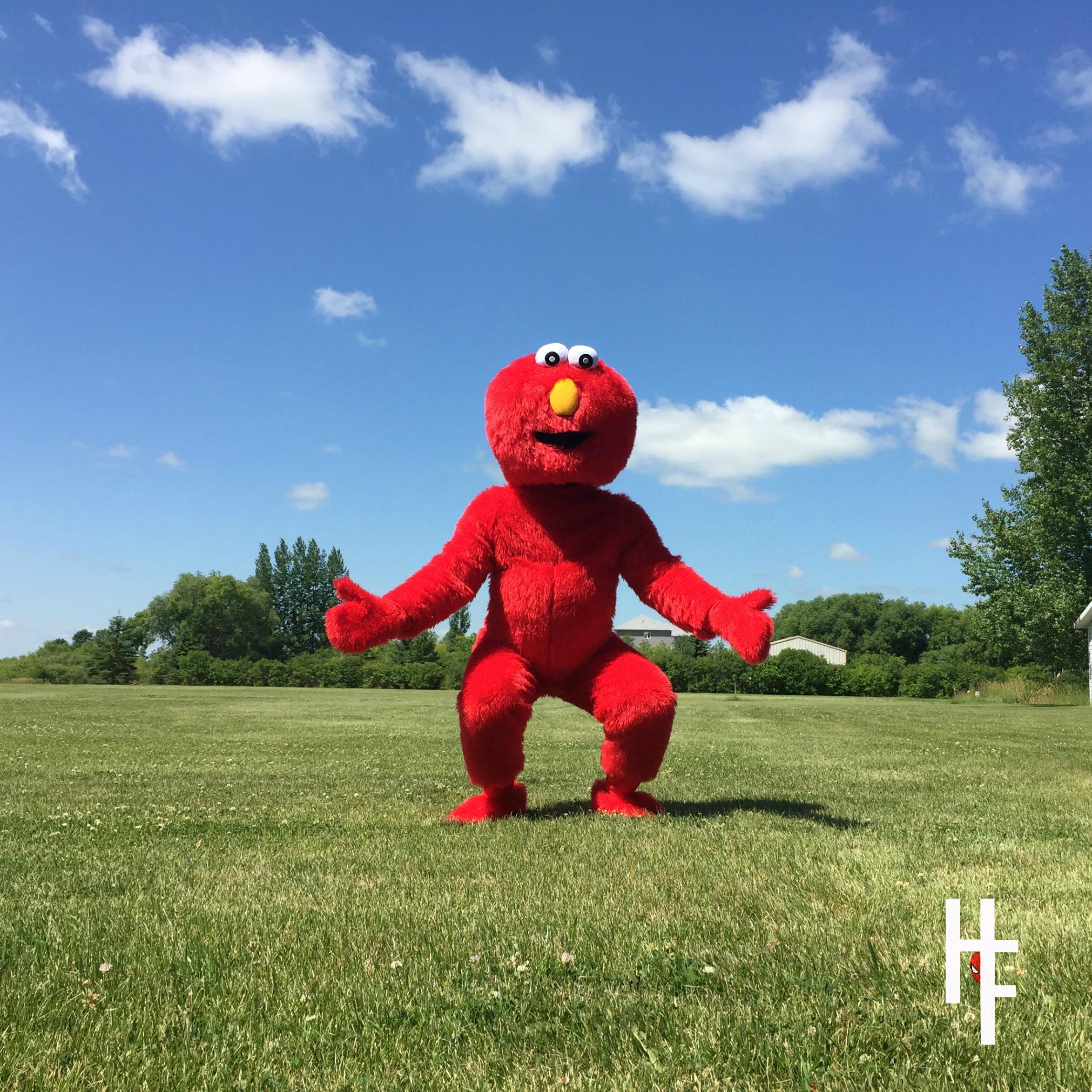 Elmo Square.jpg