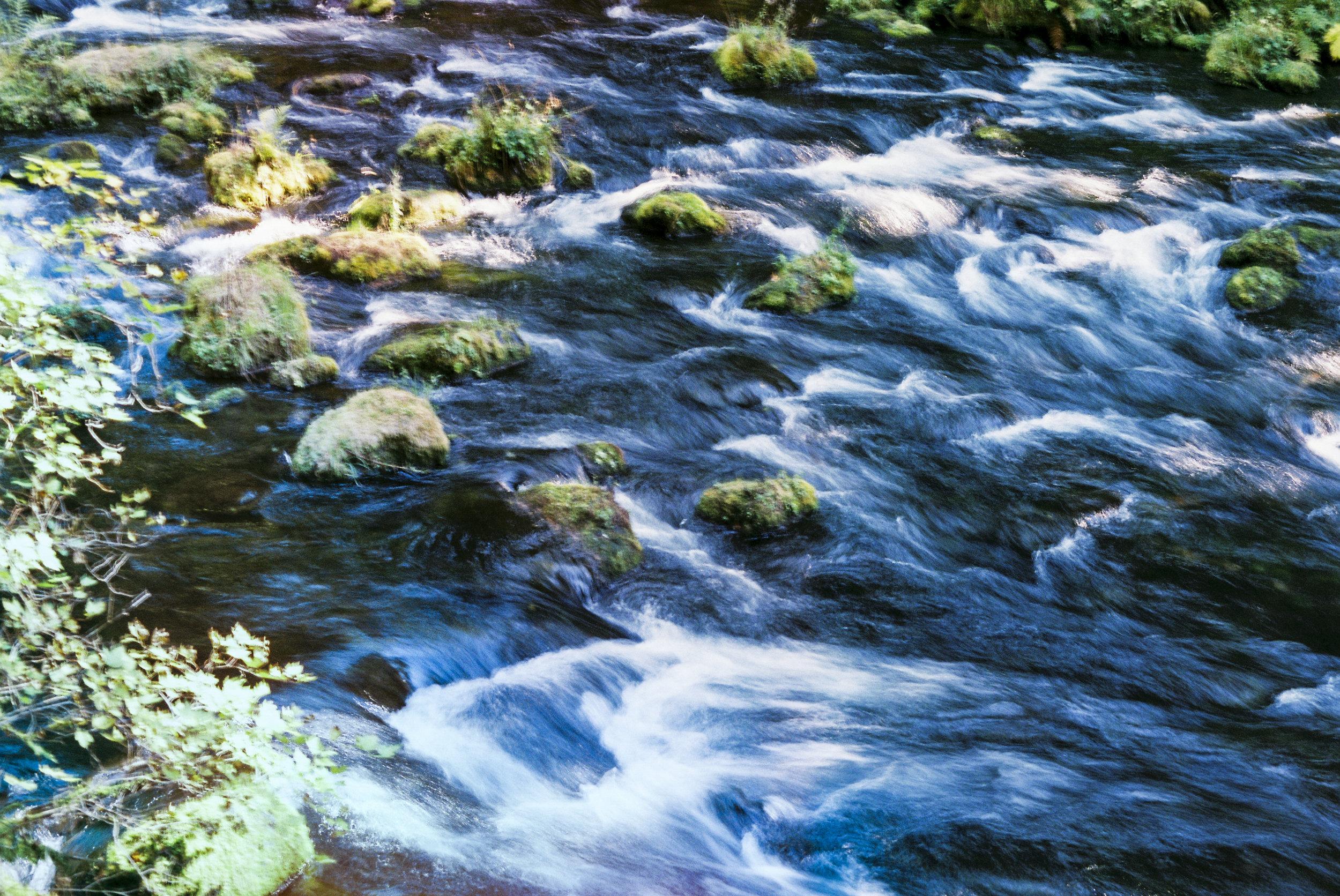 McKenzie River, OR