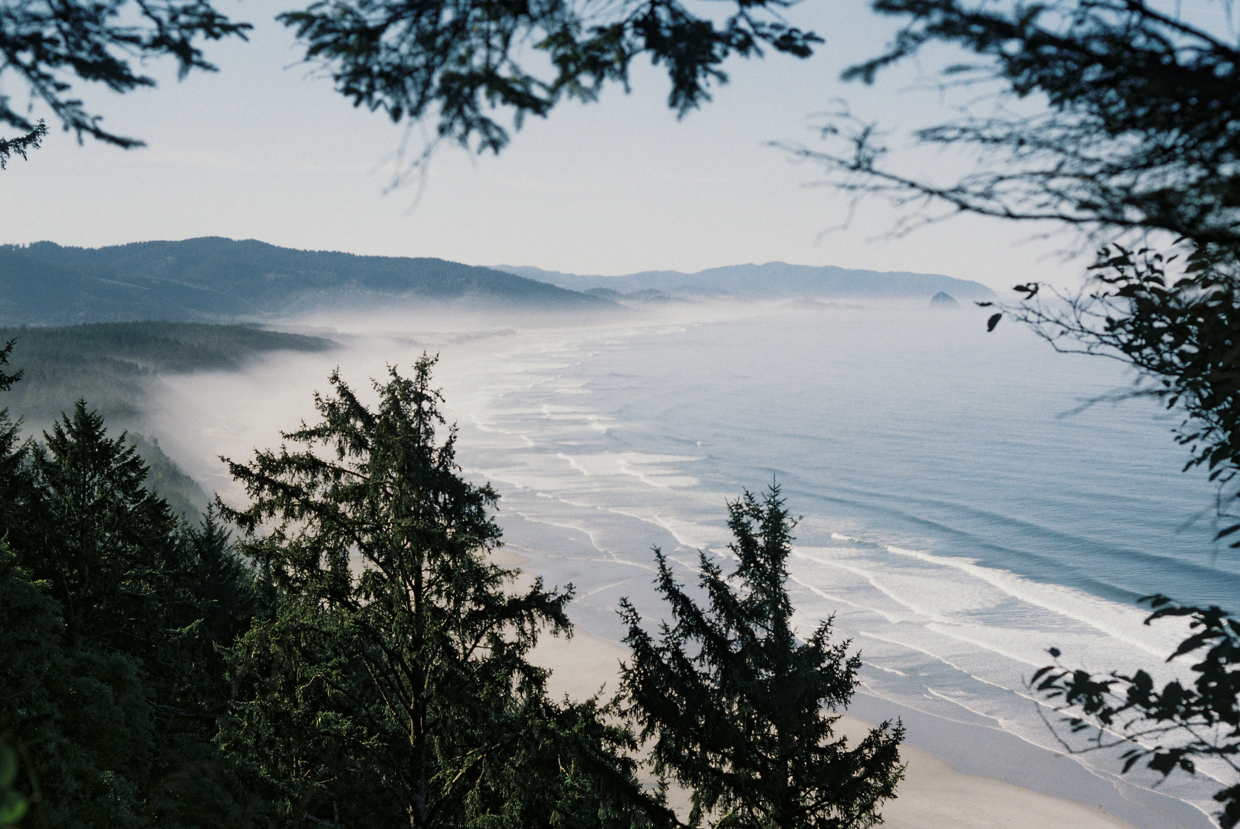 Overlooking the Pacific Ocean along a section of the Oregon Coast Trail in Cape Lookout, OR