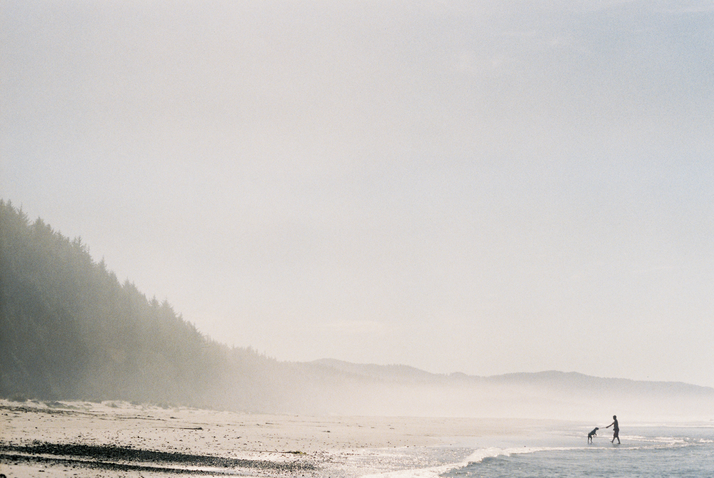 Secluded beach, part of the Oregon Coast Trail near Cape Lookout, OR