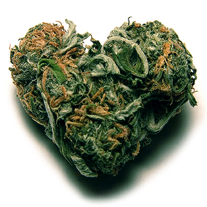 heart bud.png