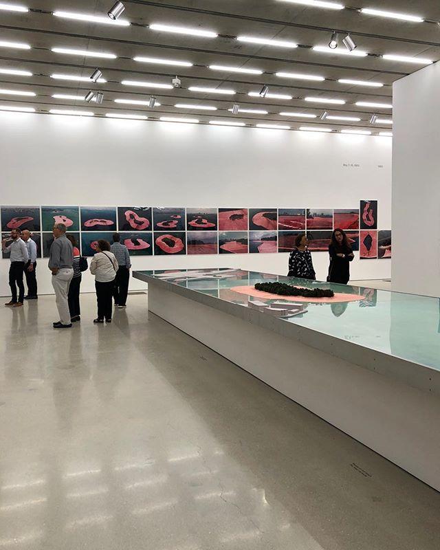 Christo & Jeanne Claude . . . . . #christo #christojeanneclaude #surroundedislands #miami #perez #perezartmuseum #miamidesigndistrict #artist #talk #amazed #miamibeach #miamiliving #pink #bubblegum #surroundedislands #incredible #surreal #experience