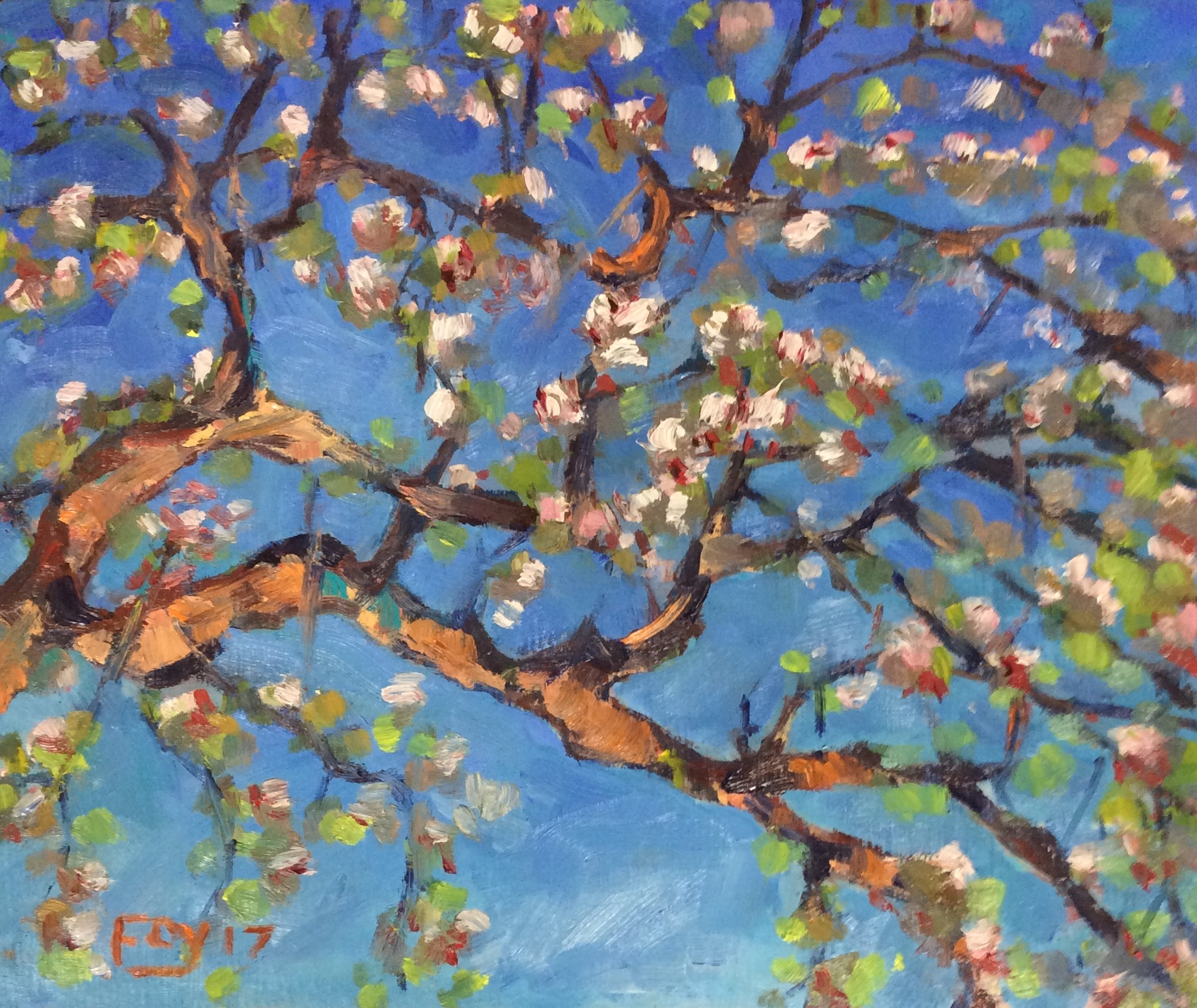 Apple blossom in May. 10 x 12. Oil on panel.