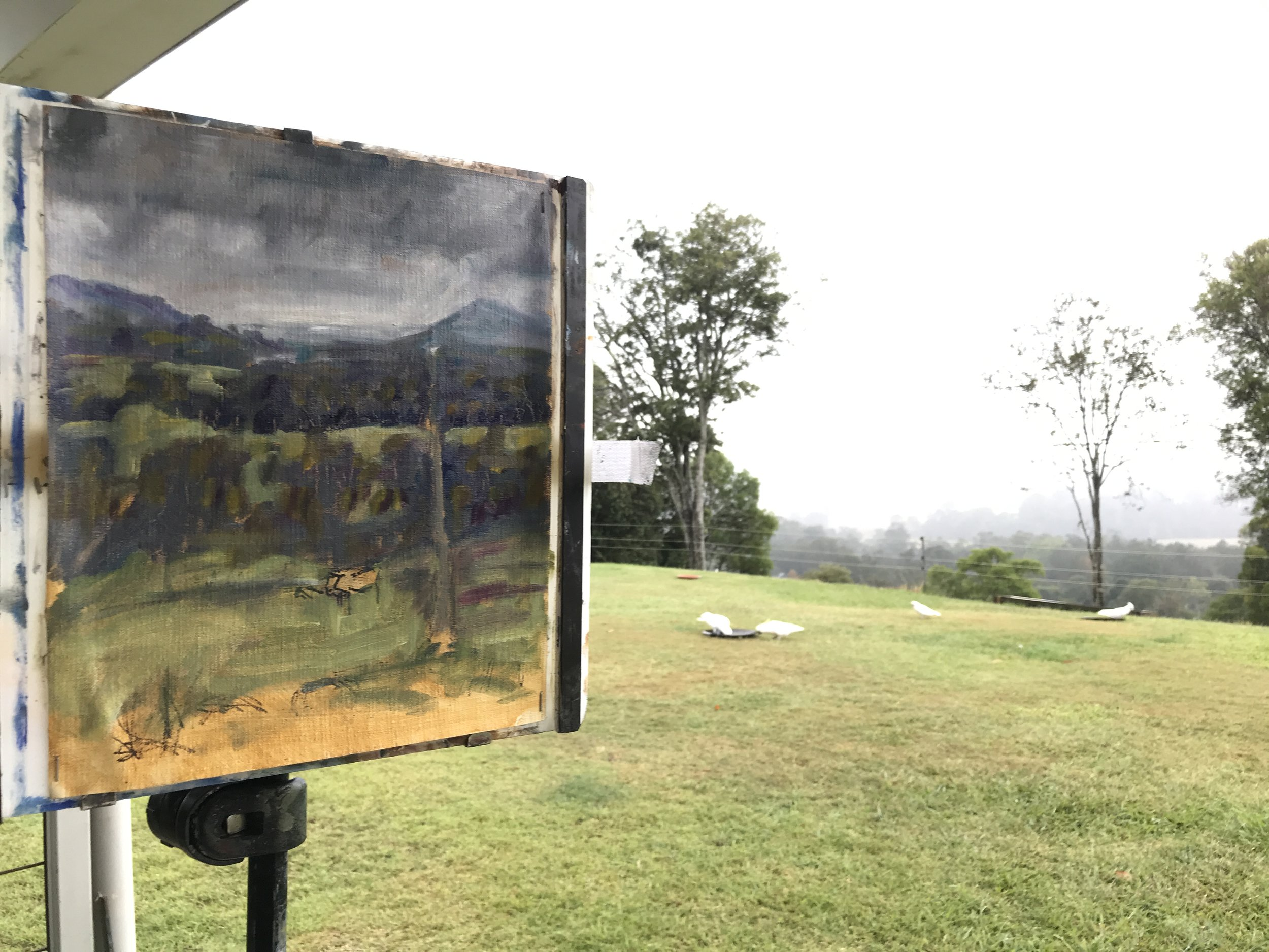 NG Rain stopped play. The start of a cloudy day painting from the back garden.