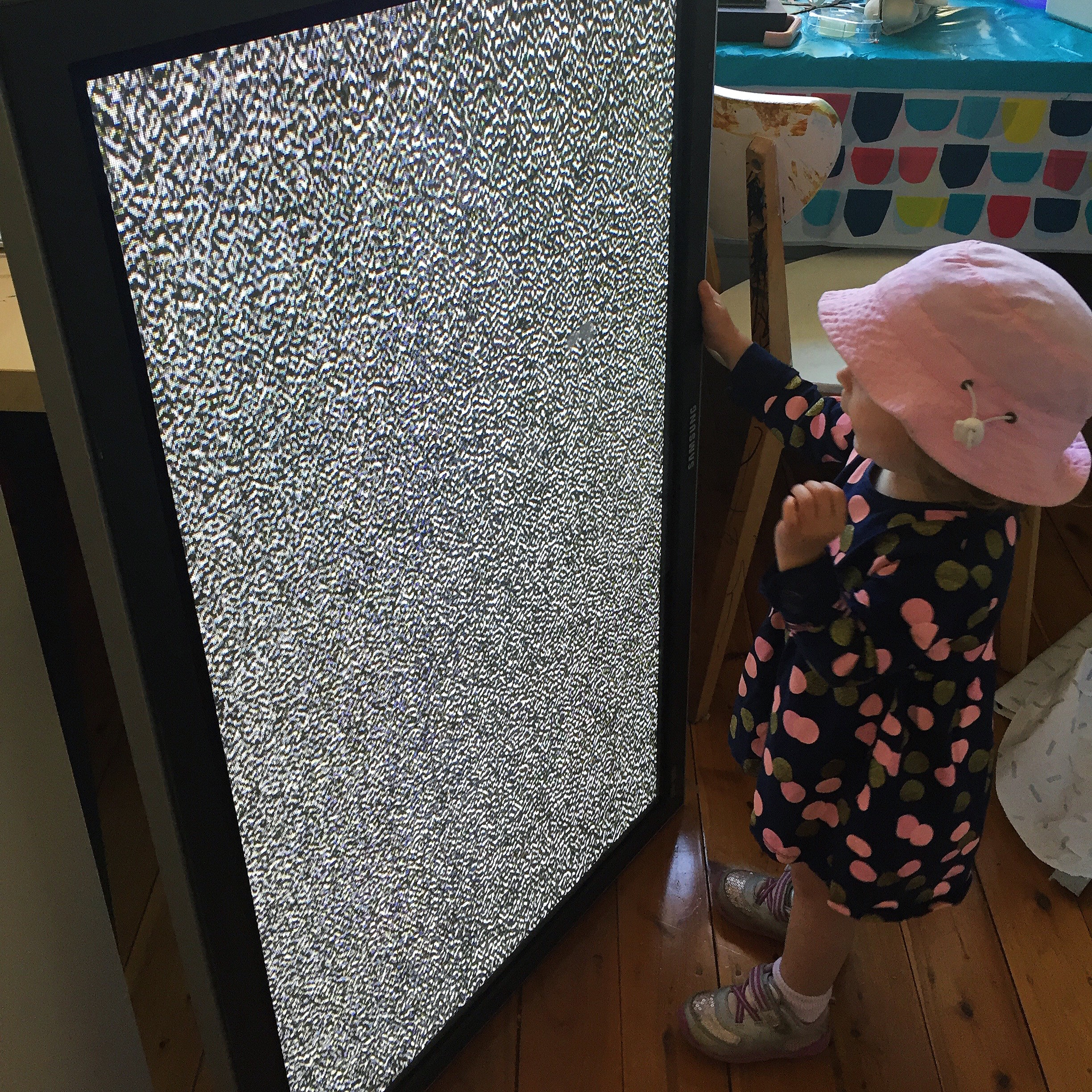 Hazel with one of the two working plasma TV's we found this week
