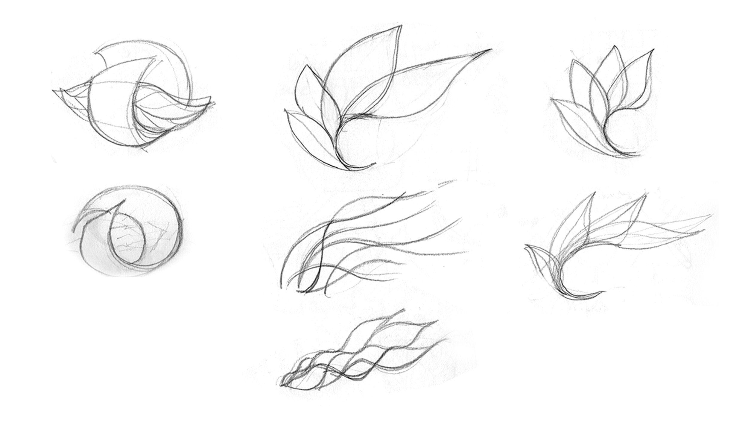 Process sketches for food Agility