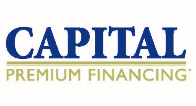 CPF logo CMYK (2).jpg