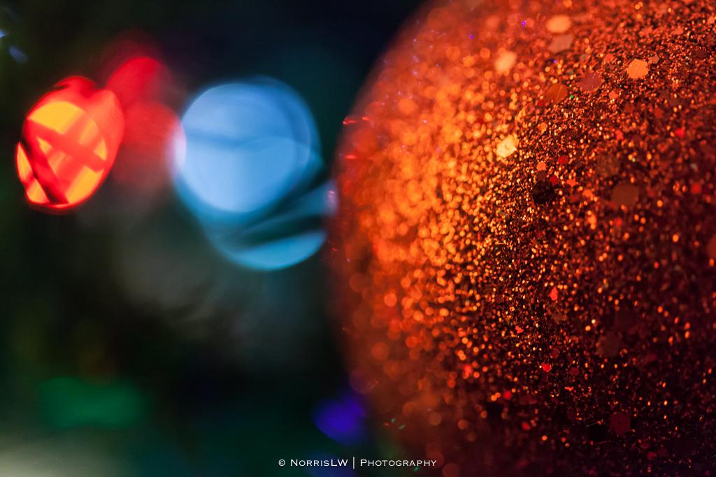 xmas-tree-20121206-001.jpg