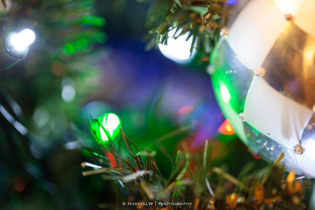 xmas-tree-20121217-005.jpg