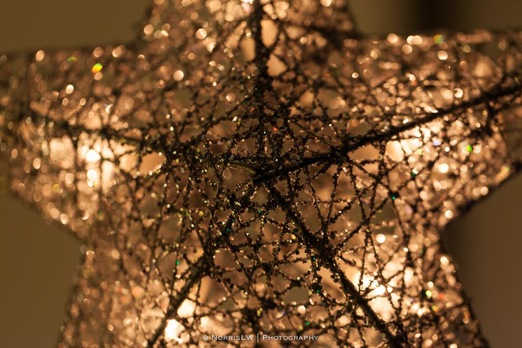 xmas-tree-20121217-009.jpg