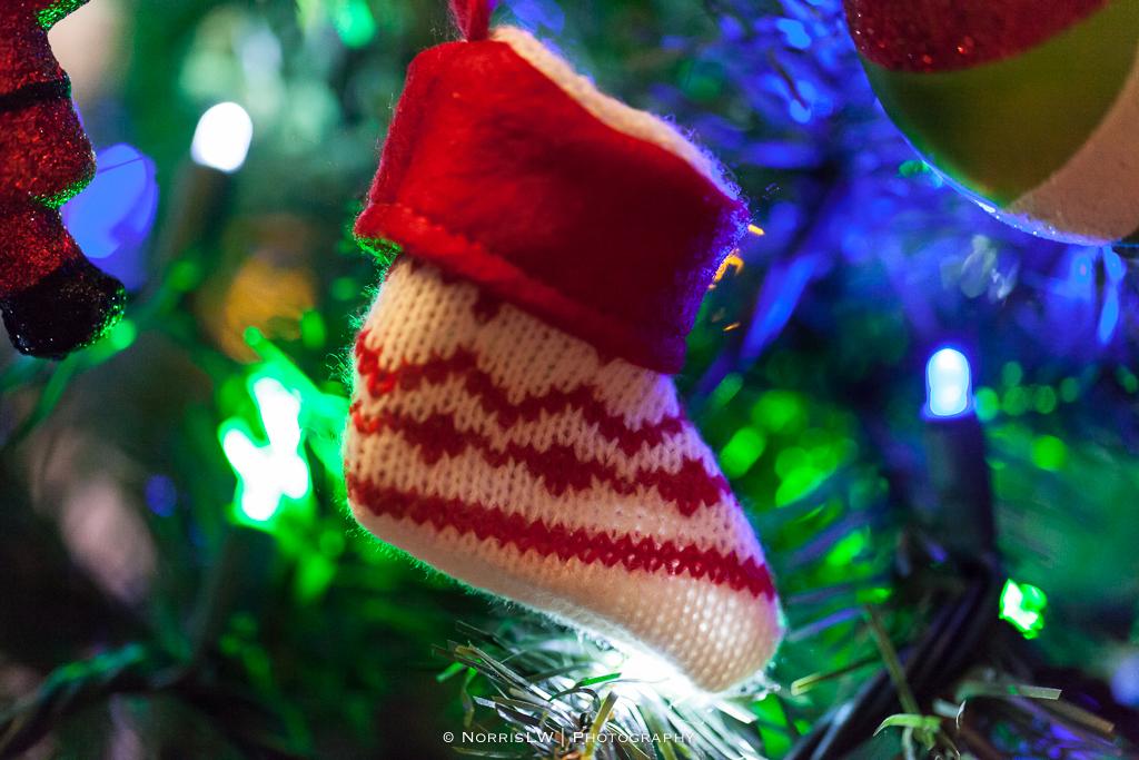 xmas-tree-20121217-012.jpg