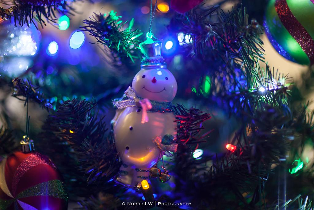 xmas-tree-20121217-019.jpg