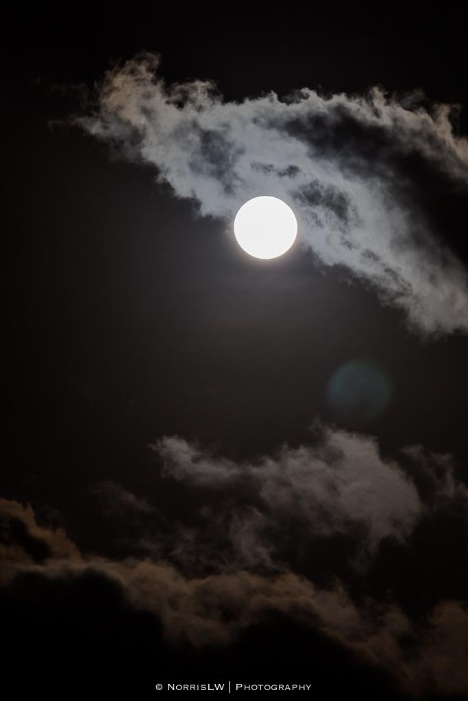 estate-moon-20130126-001.jpg
