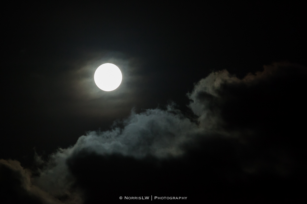 estate-moon-20130126-002.jpg