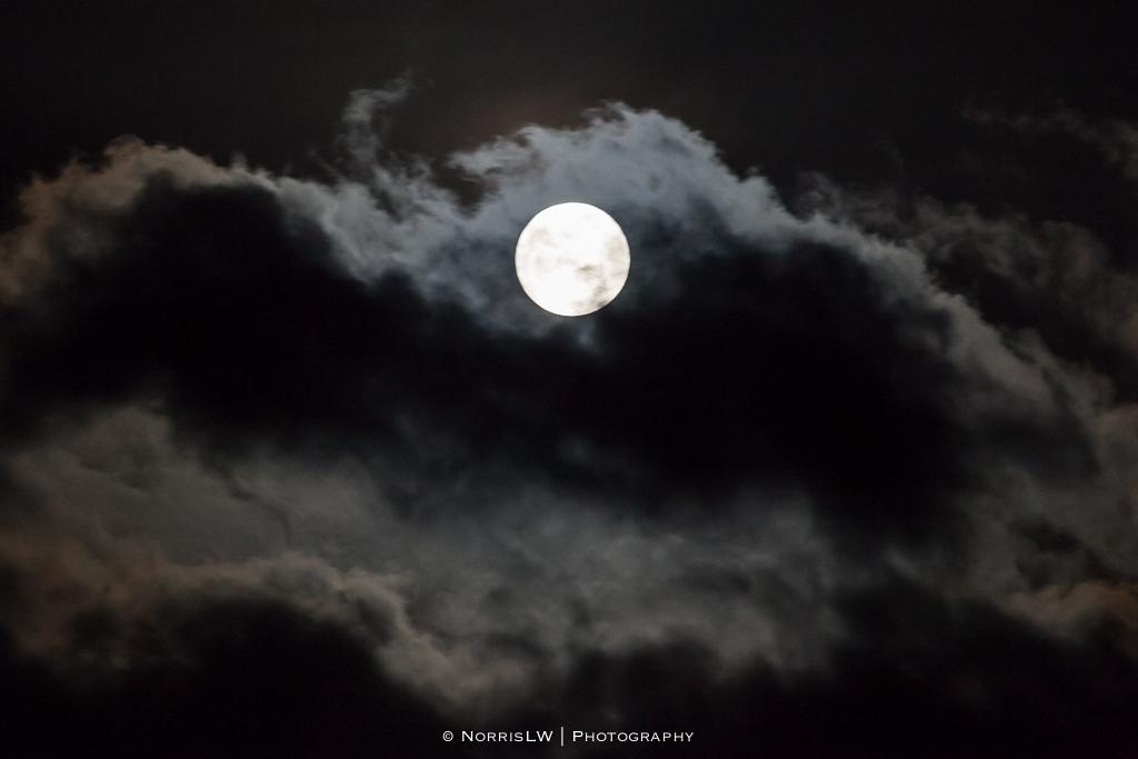 estate-moon-20130126-003.jpg