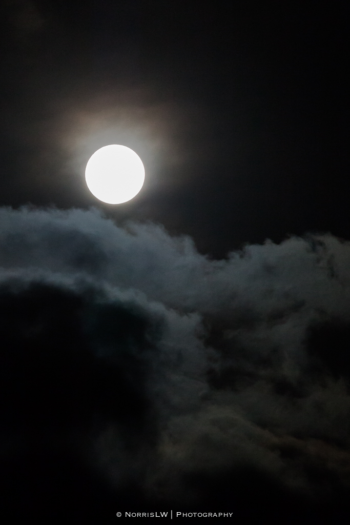 estate-moon-20130126-004.jpg