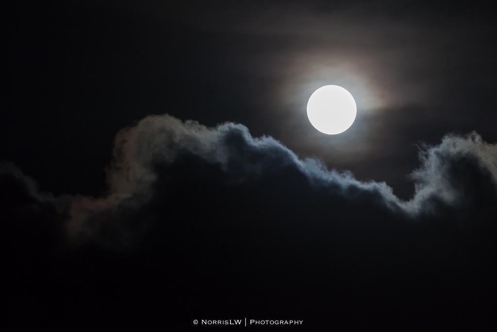estate-moon-20130126-006.jpg