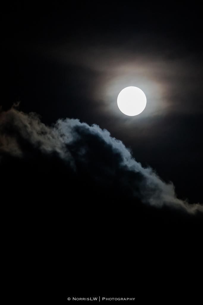 estate-moon-20130126-007.jpg