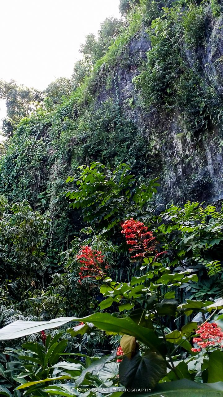 tahiti_landscape-20150522-048.jpg