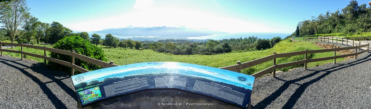 tahiti_landscape-20150522-056.jpg