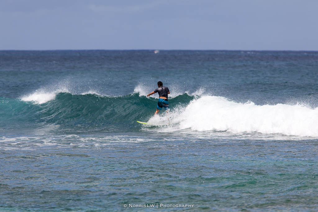 Turtle_Beach_Surf_Jim-20170407-003.jpg
