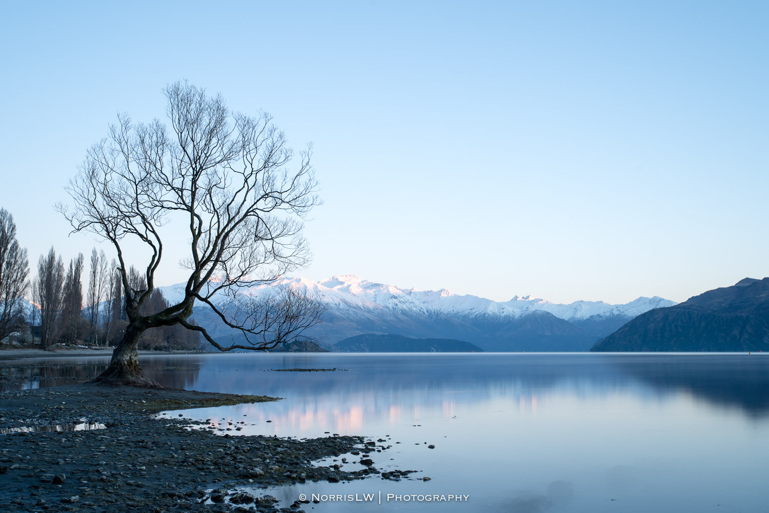 Wanaka_South_Island_NZ-20190907-014.jpg