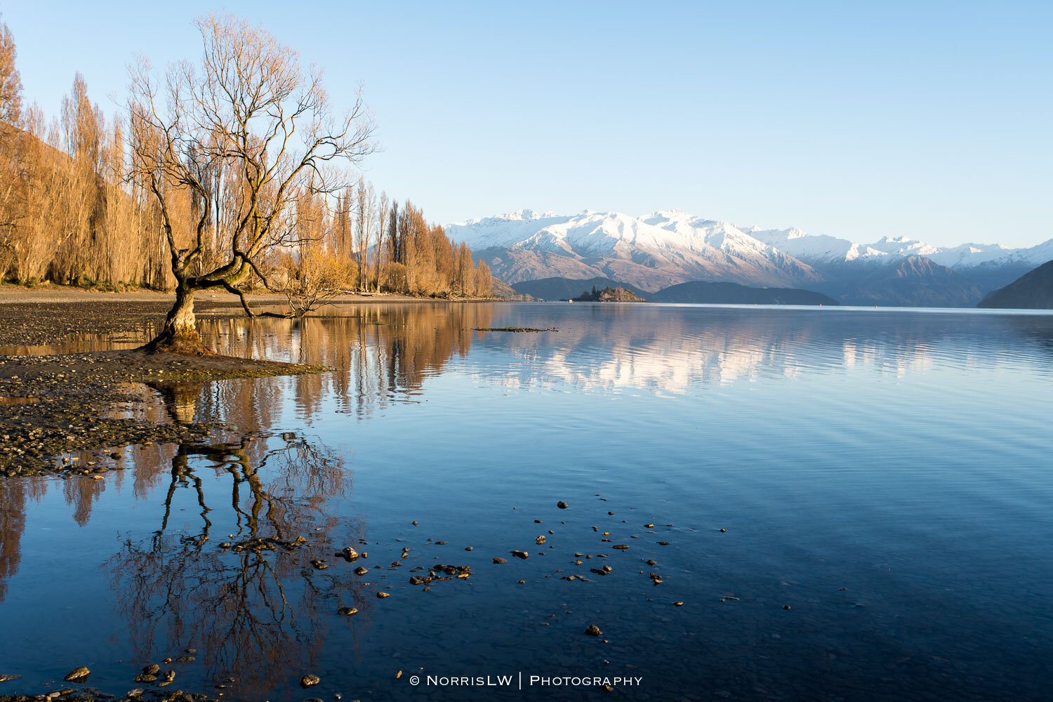 Wanaka_South_Island_NZ-20190907-019.jpg