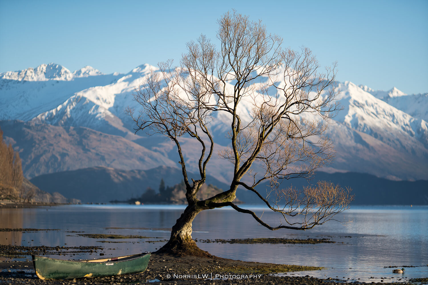 Wanaka_South_Island_NZ-20190907-023.jpg