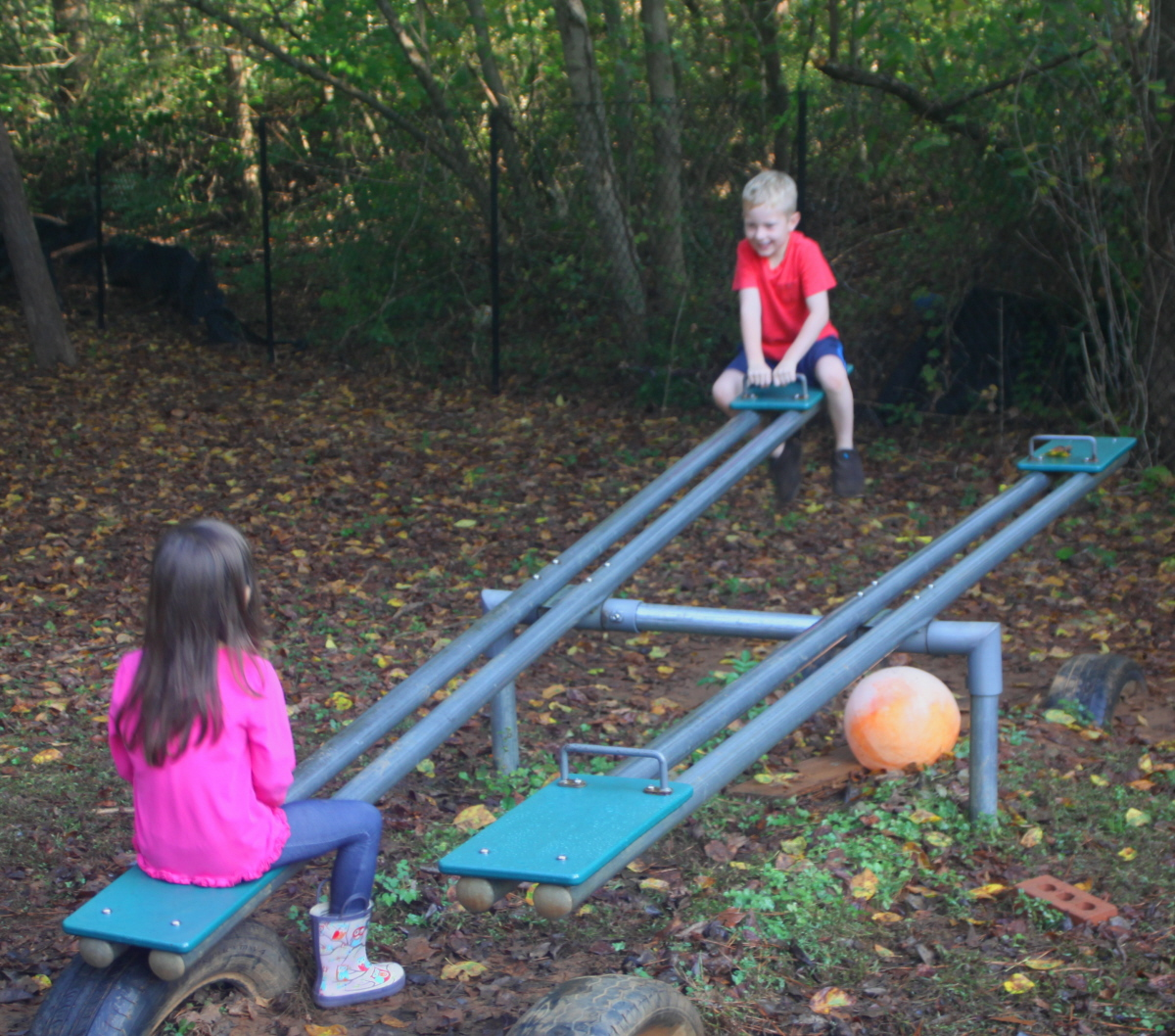 Seesaw action email.jpg