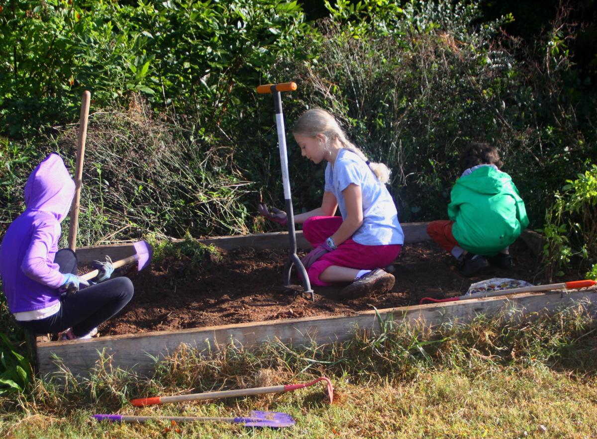 Preparing the soil email.jpg