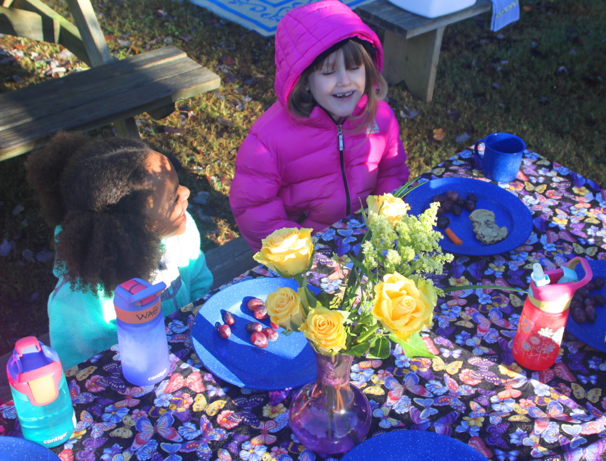 Birthday party at the picnic tables email.jpg