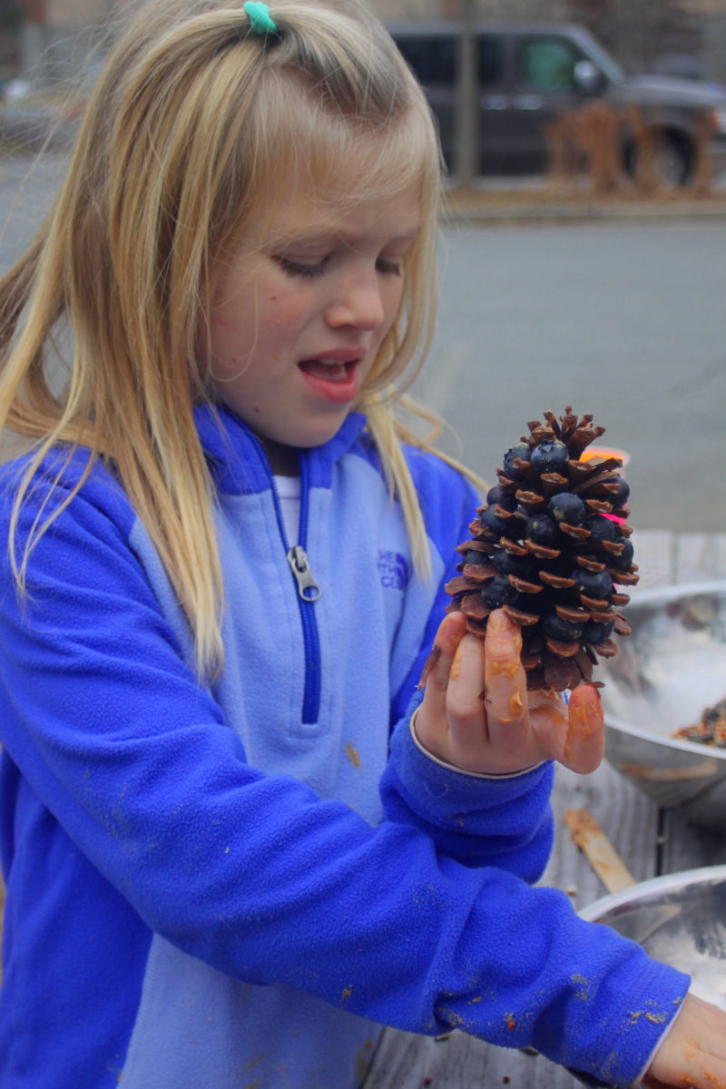 Packing a pinecone with blueberries email.jpg