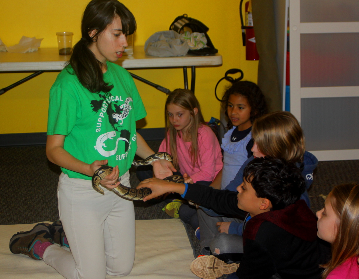 A chance to touch the ball python email.jpg