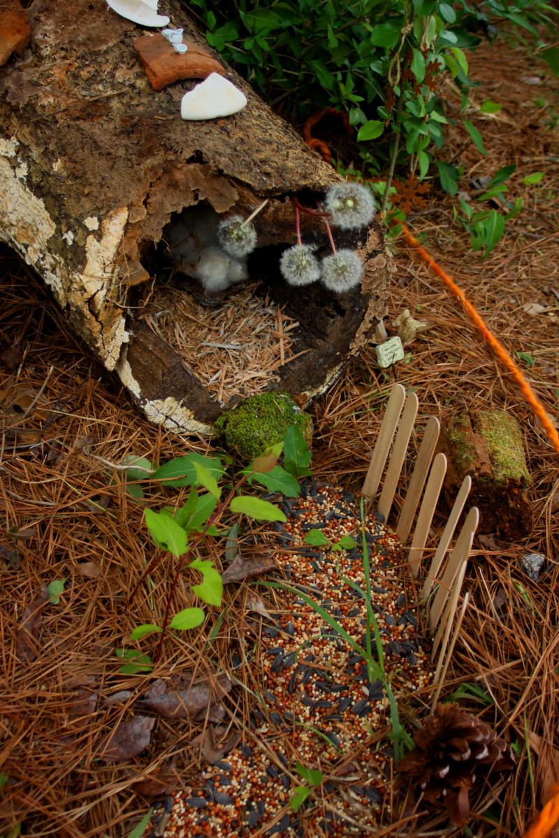Fairy hostel closeup of log email.jpg