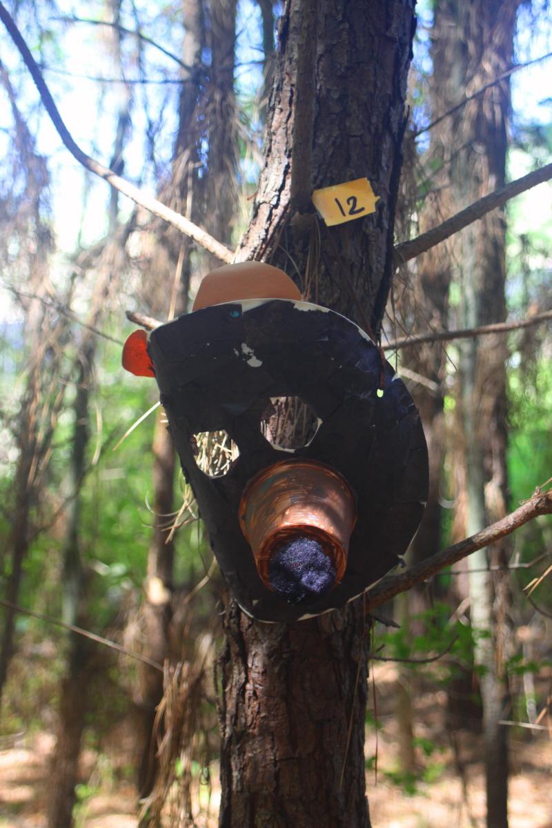 Black bear mask email_1.jpg