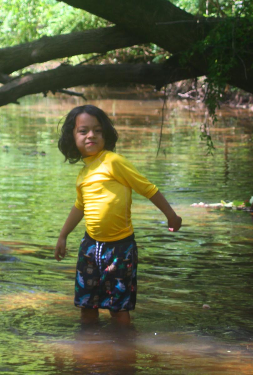Creek crawl closeup email.jpg