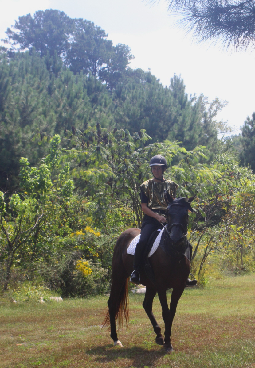 The knight on horseback email.jpg