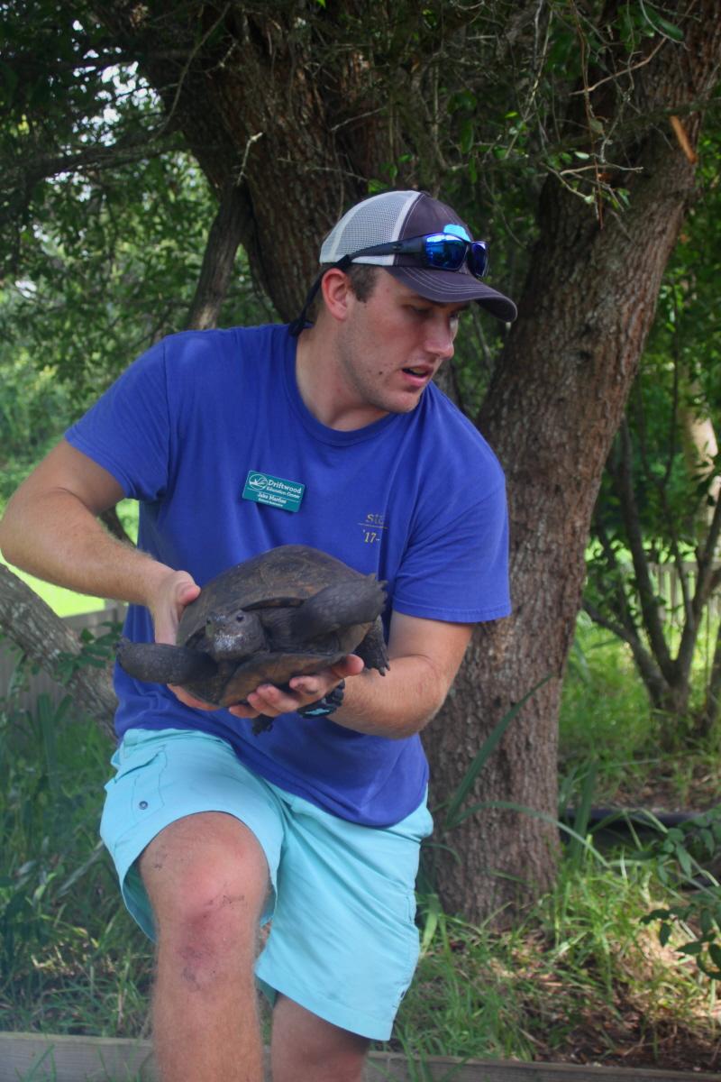 Gopher tortoise email.jpg