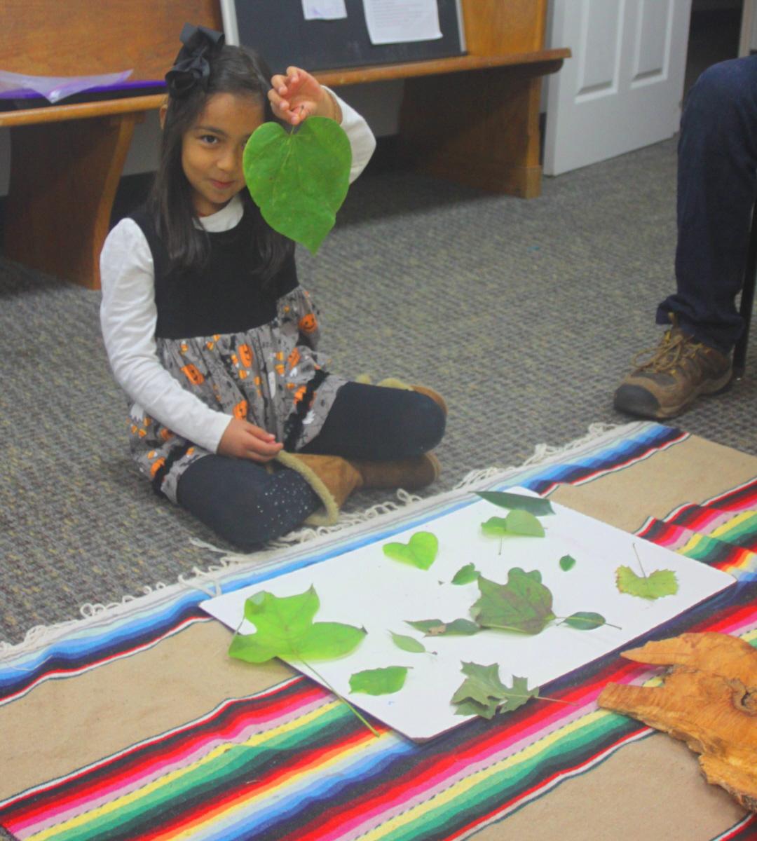 Leaf collection presentation email.jpg