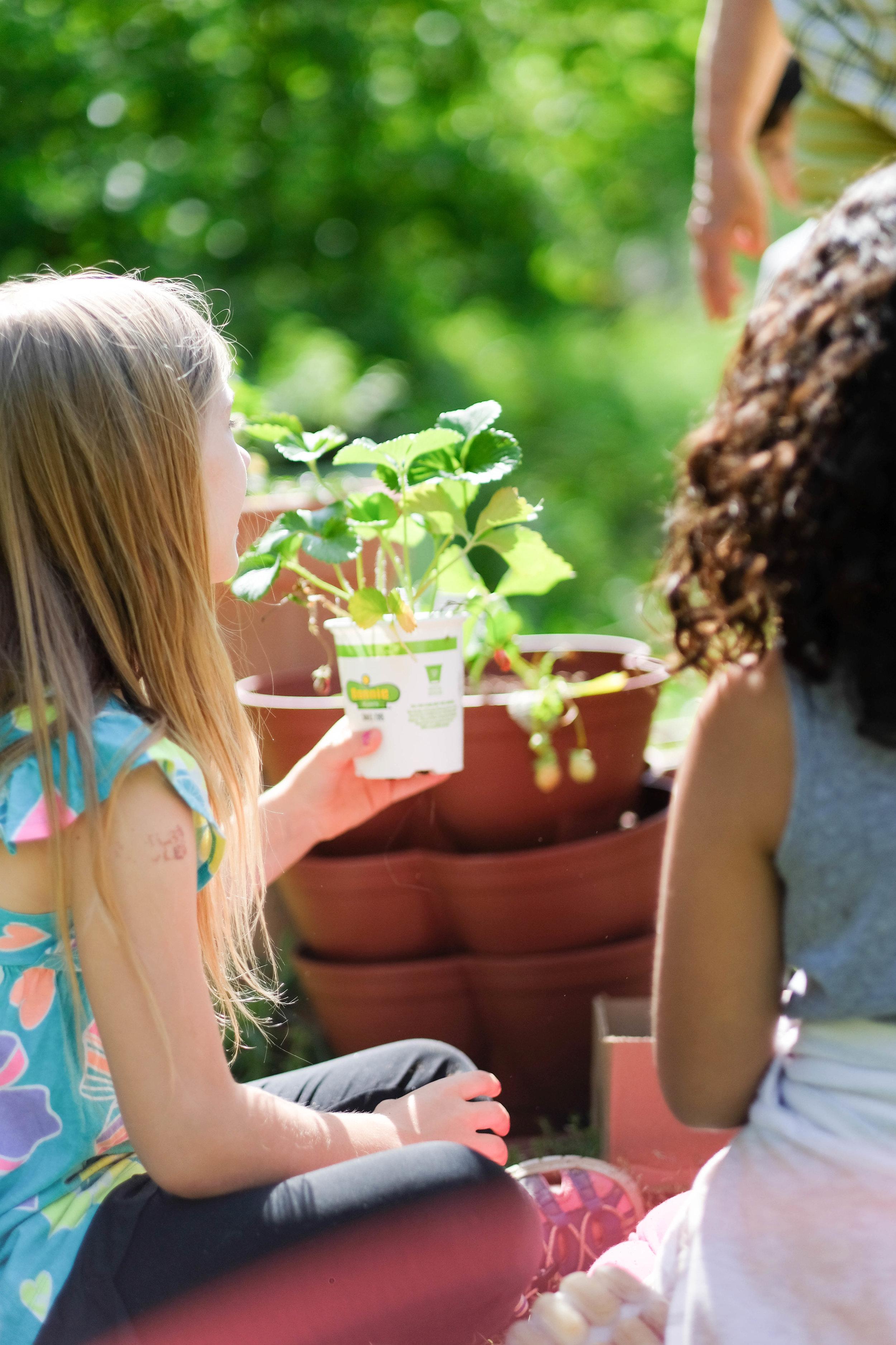 The Garden School-47.jpg