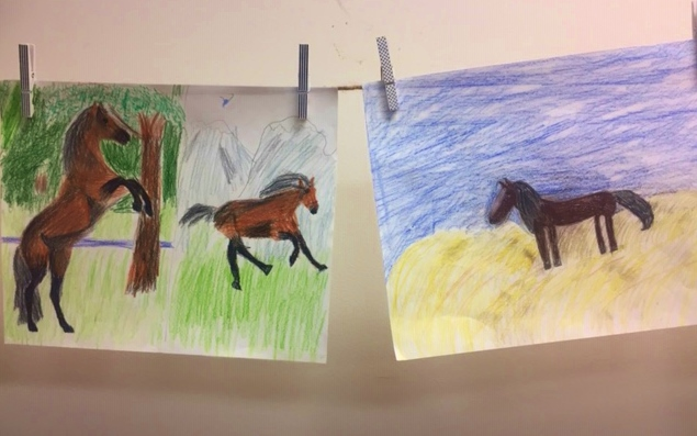 Mammal take-home project wild horses.jpg