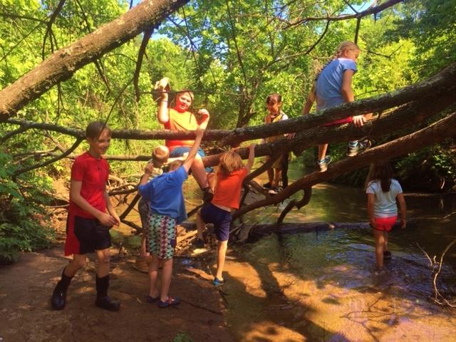 A new tree bridge.jpg